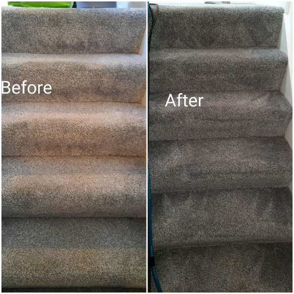 Before and after images of carpet on stairs showing a clear difference after cleaning